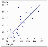 Height and Weight Correlation